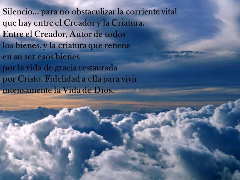 Silencio… para no obstaculizar la corriente vital que hay entre el Creador y la Criatura.