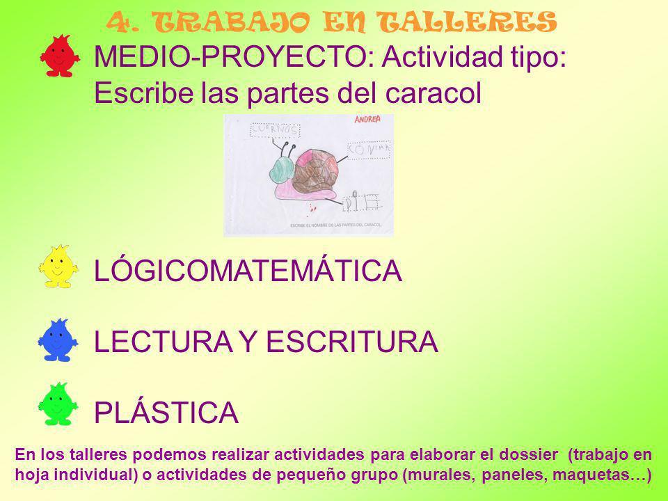 MEDIO-PROYECTO: Actividad tipo: Escribe las partes del caracol