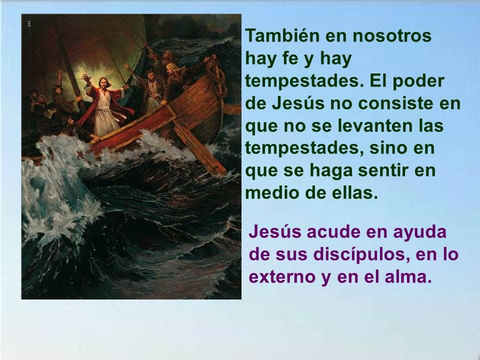 También en nosotros hay fe y hay tempestades