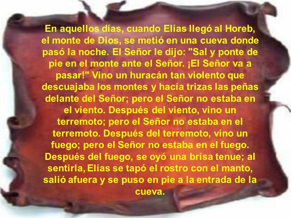 En aquellos días, cuando Elías llegó al Horeb, el monte de Dios, se metió en una cueva donde pasó la noche.