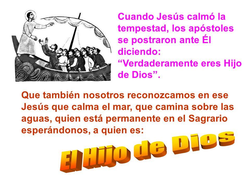 Cuando Jesús calmó la tempestad, los apóstoles se postraron ante Él diciendo: Verdaderamente eres Hijo de Dios .