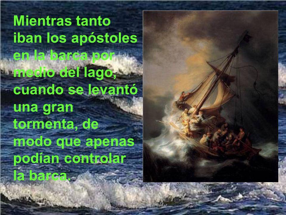 Mientras tanto iban los apóstoles en la barca por medio del lago, cuando se levantó una gran tormenta, de modo que apenas podían controlar la barca.