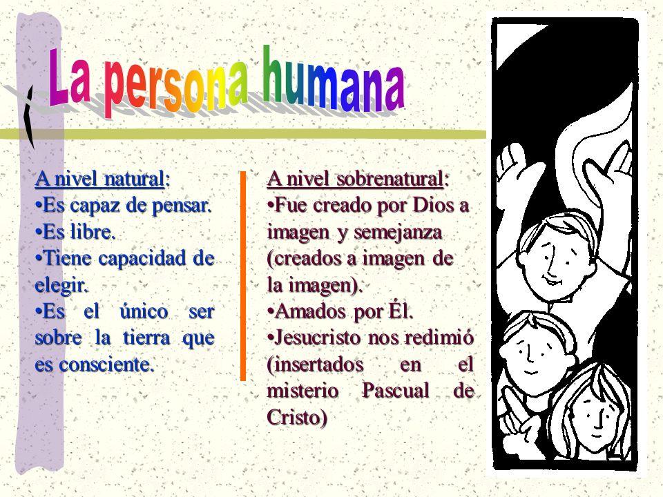 La persona humana A nivel natural: Es capaz de pensar. Es libre.