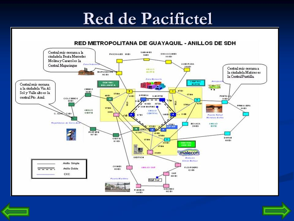 Red de Pacifictel