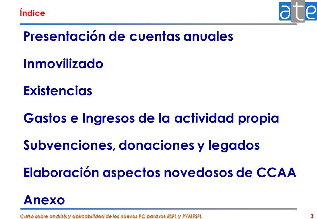 Presentación de cuentas anuales Inmovilizado Existencias