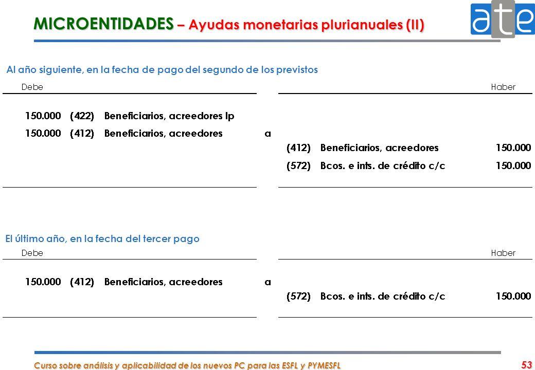 MICROENTIDADES – Ayudas monetarias plurianuales (II)