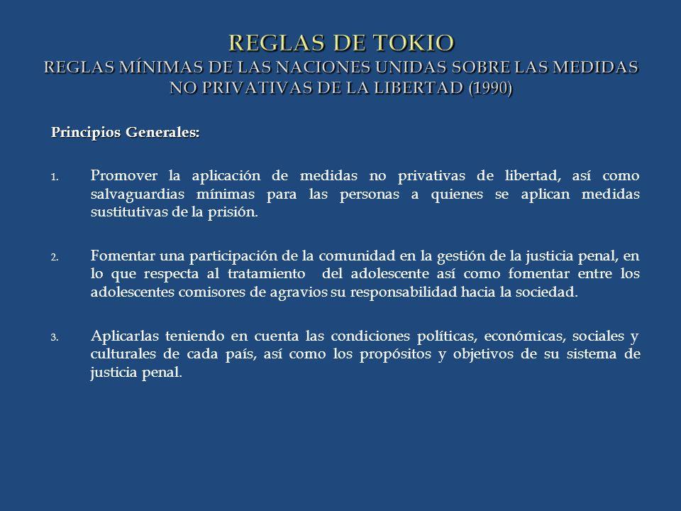REGLAS DE TOKIO REGLAS MÍNIMAS DE LAS NACIONES UNIDAS SOBRE LAS MEDIDAS NO PRIVATIVAS DE LA LIBERTAD (1990)