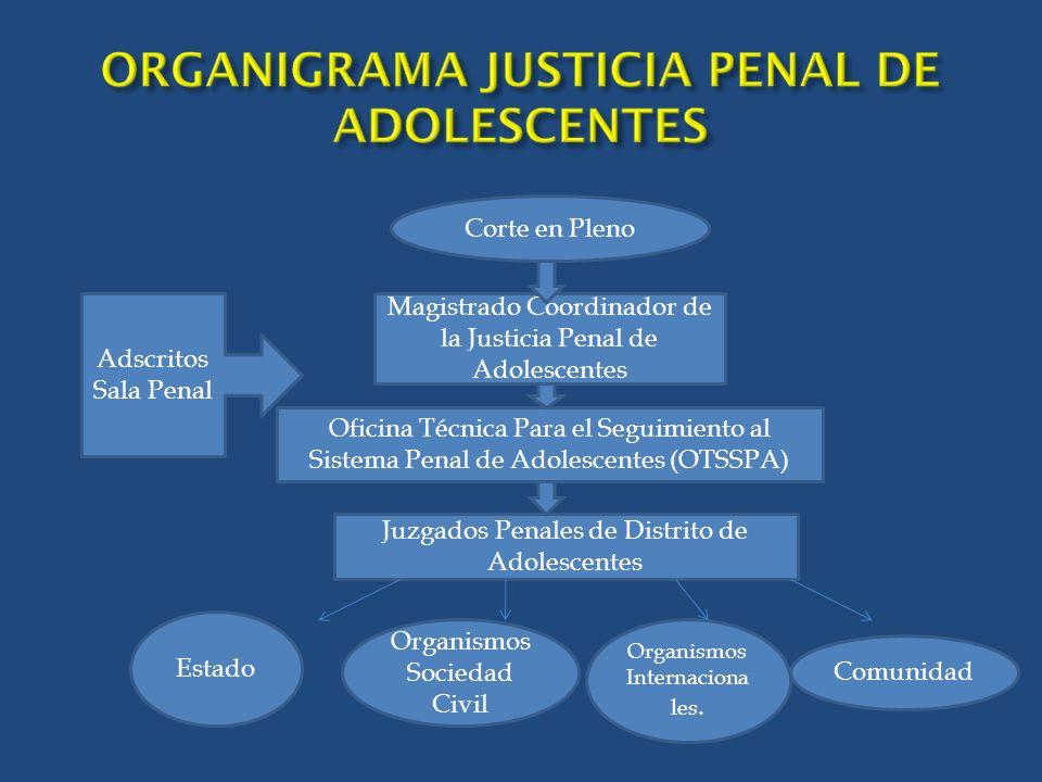 Magistrado Coordinador de la Justicia Penal de Adolescentes
