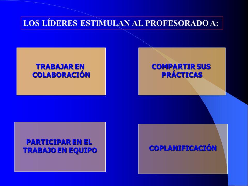 LOS LÍDERES ESTIMULAN AL PROFESORADO A: