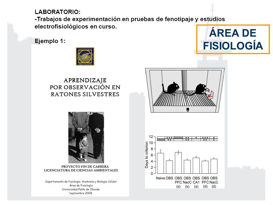 ÁREA DE FISIOLOGÍA LABORATORIO: