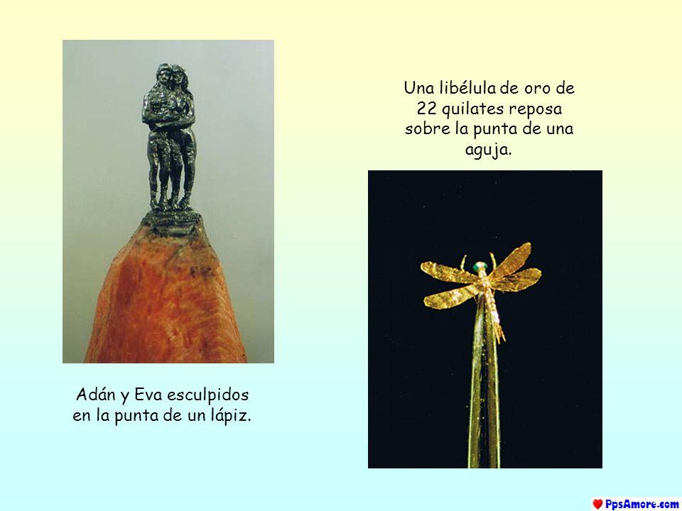 Una libélula de oro de 22 quilates reposa sobre la punta de una aguja.