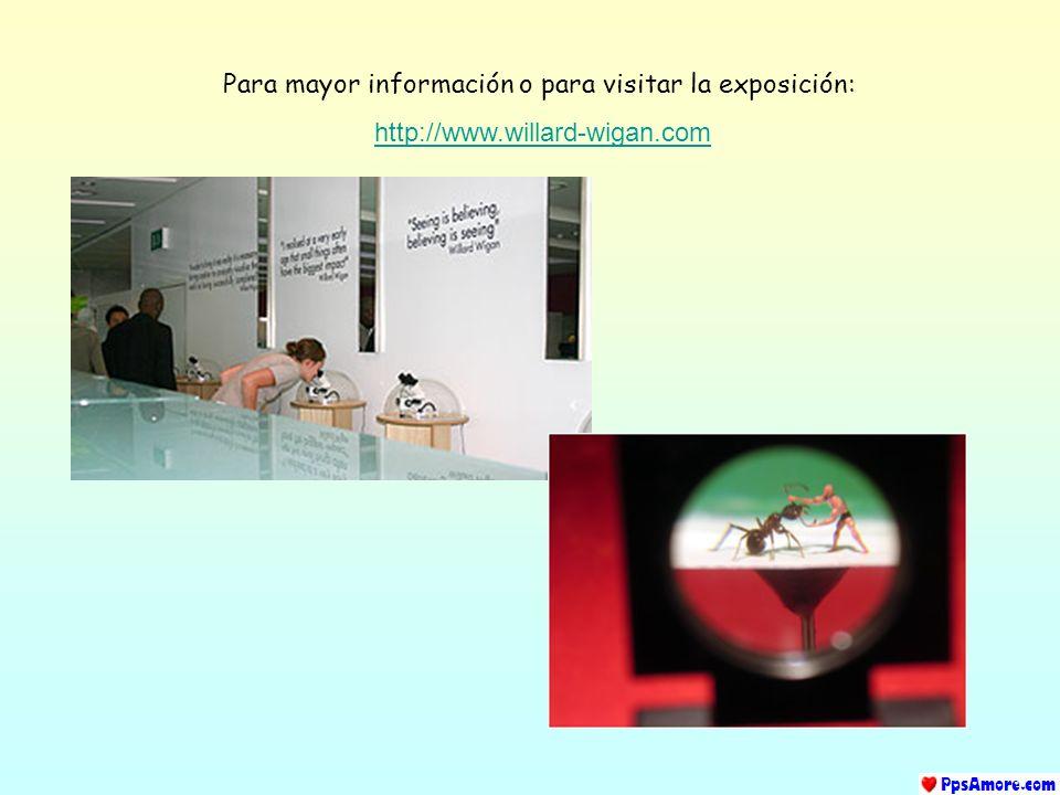 Para mayor información o para visitar la exposición: