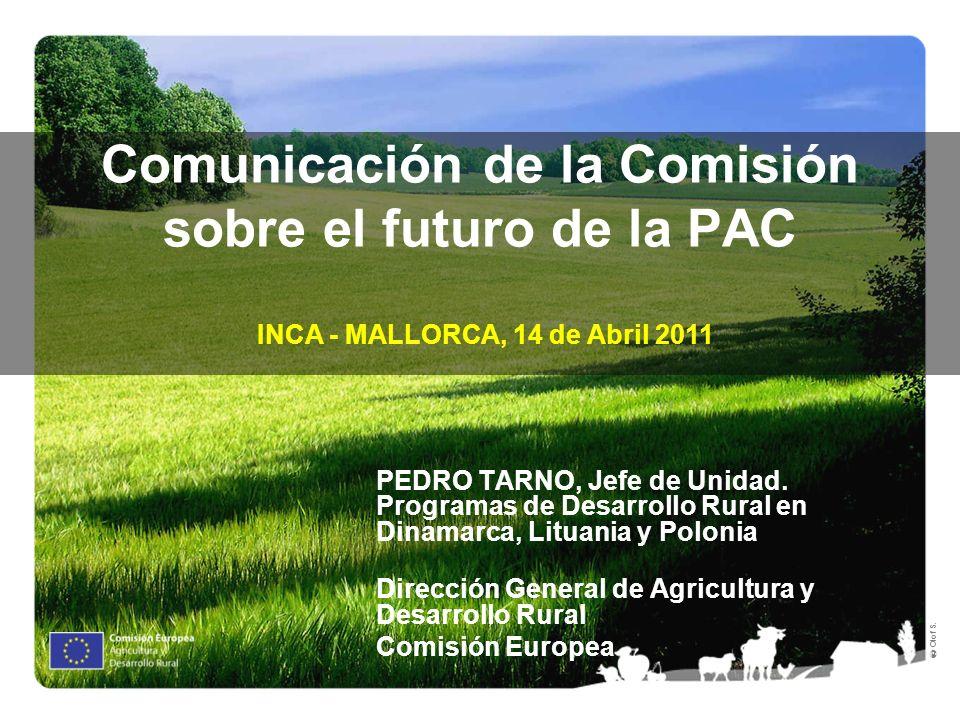Comunicación de la Comisión sobre el futuro de la PAC