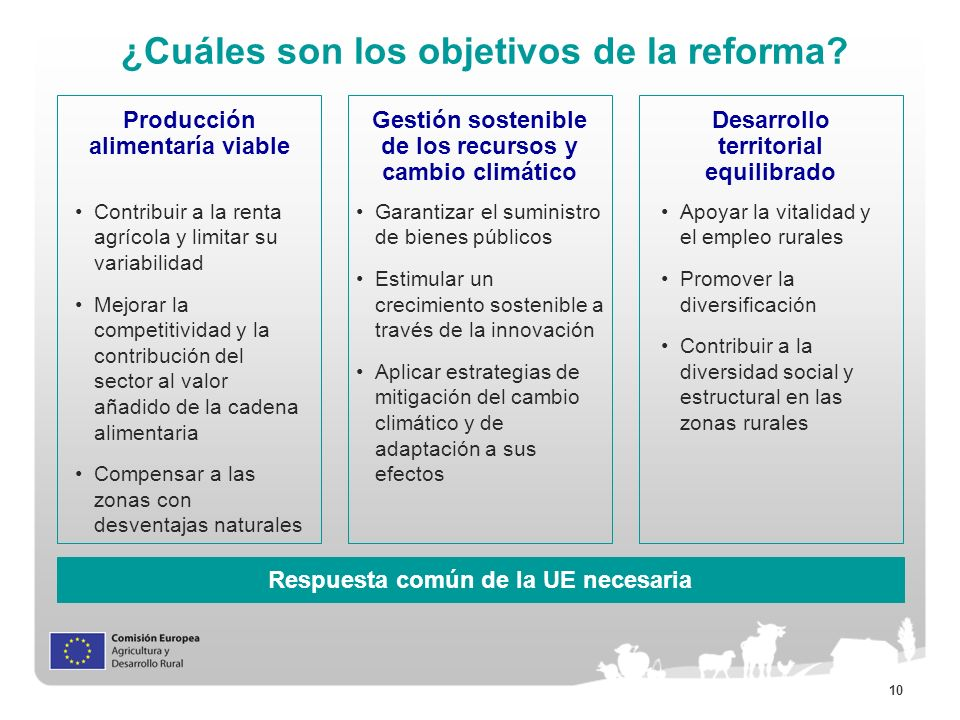 ¿Cuáles son los objetivos de la reforma