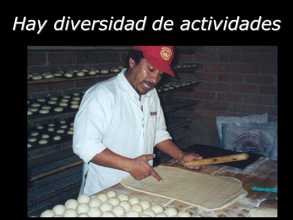 Hay diversidad de actividades