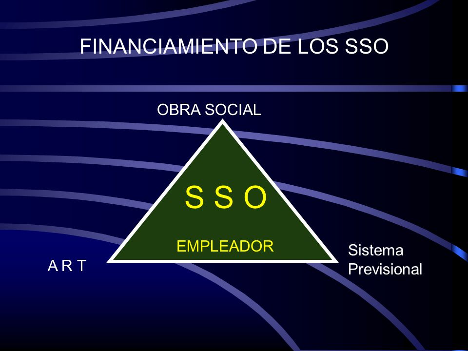 FINANCIAMIENTO DE LOS SSO