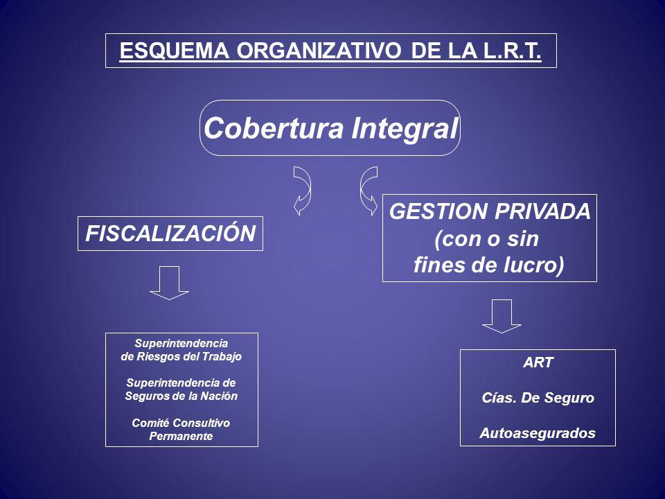 ESQUEMA ORGANIZATIVO DE LA L.R.T.