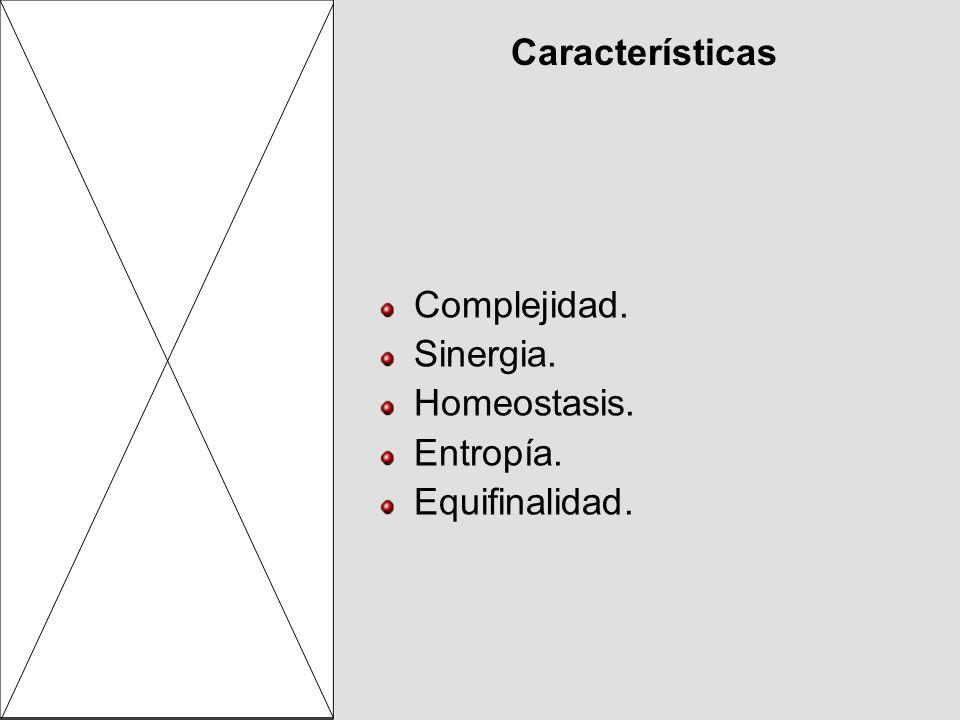Características Complejidad. Sinergia. Homeostasis. Entropía. Equifinalidad.