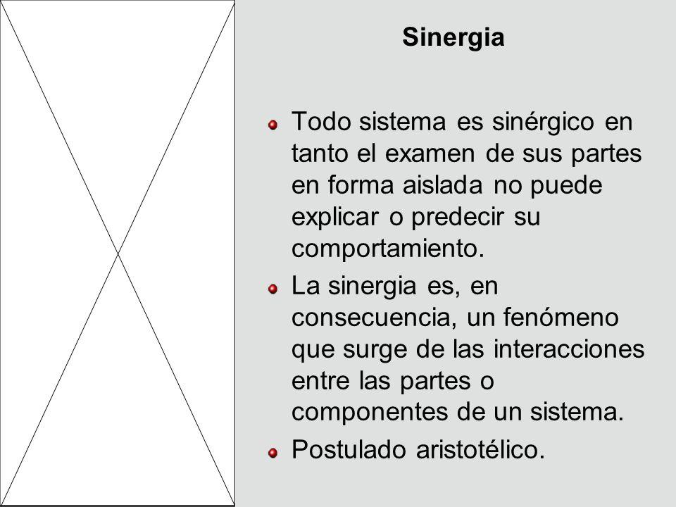 Sinergia Todo sistema es sinérgico en tanto el examen de sus partes en forma aislada no puede explicar o predecir su comportamiento.