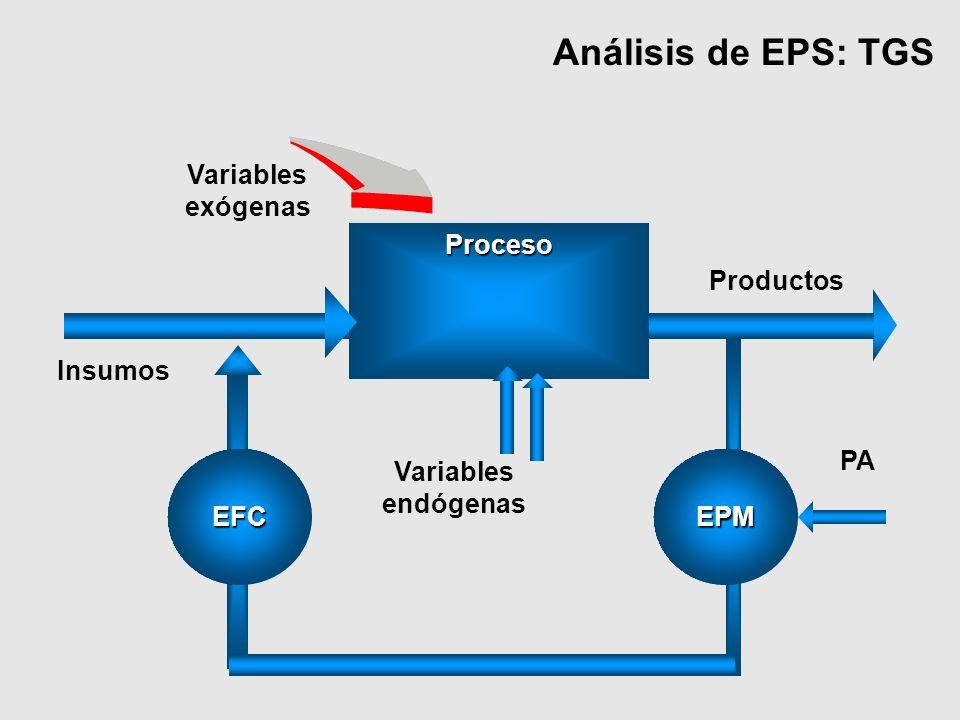 Análisis de EPS: TGS Variables exógenas Proceso Productos Insumos PA
