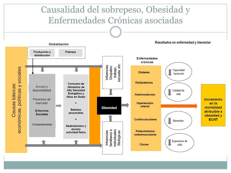 Causalidad del sobrepeso, Obesidad y Enfermedades Crónicas asociadas
