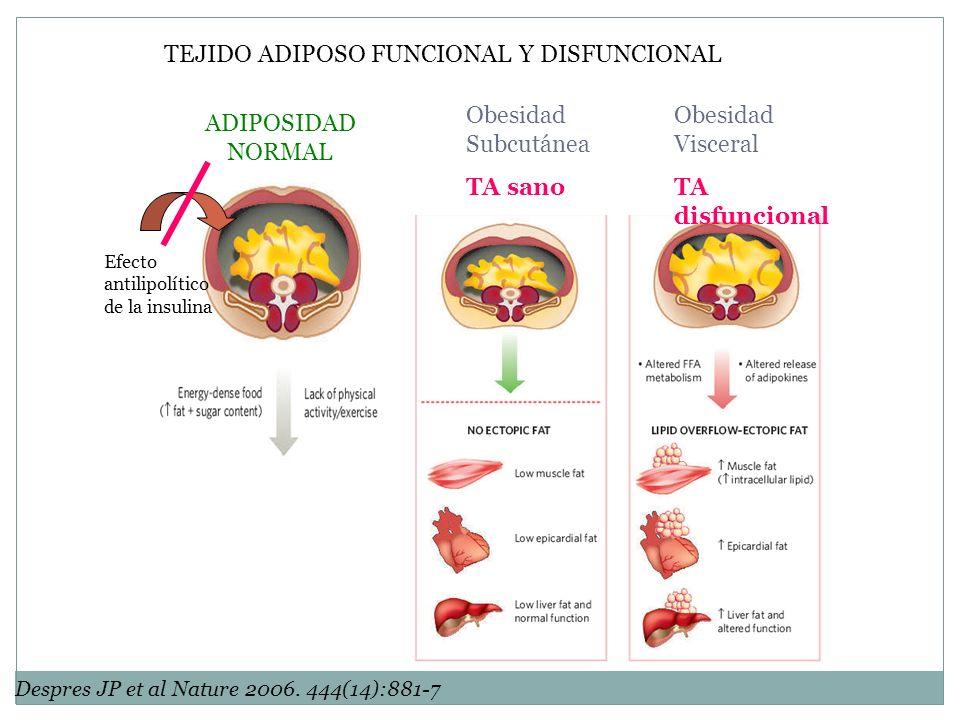 TEJIDO ADIPOSO FUNCIONAL Y DISFUNCIONAL