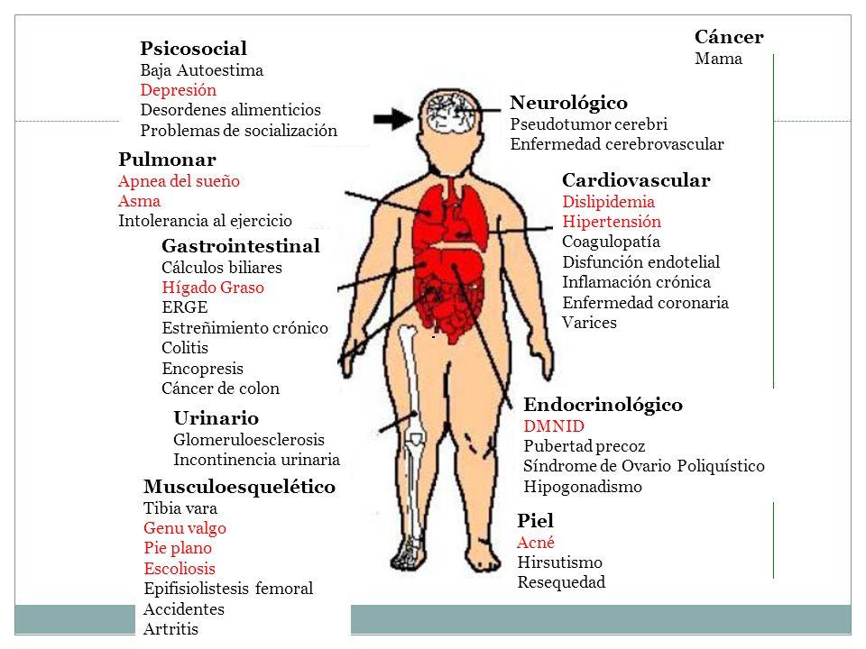 Cáncer Psicosocial Neurológico Pulmonar Cardiovascular