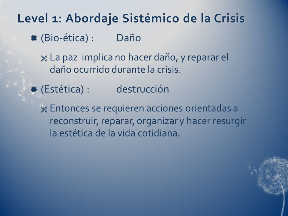 Level 1: Abordaje Sistémico de la Crisis