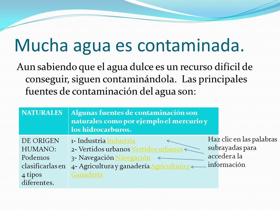 Mucha agua es contaminada.