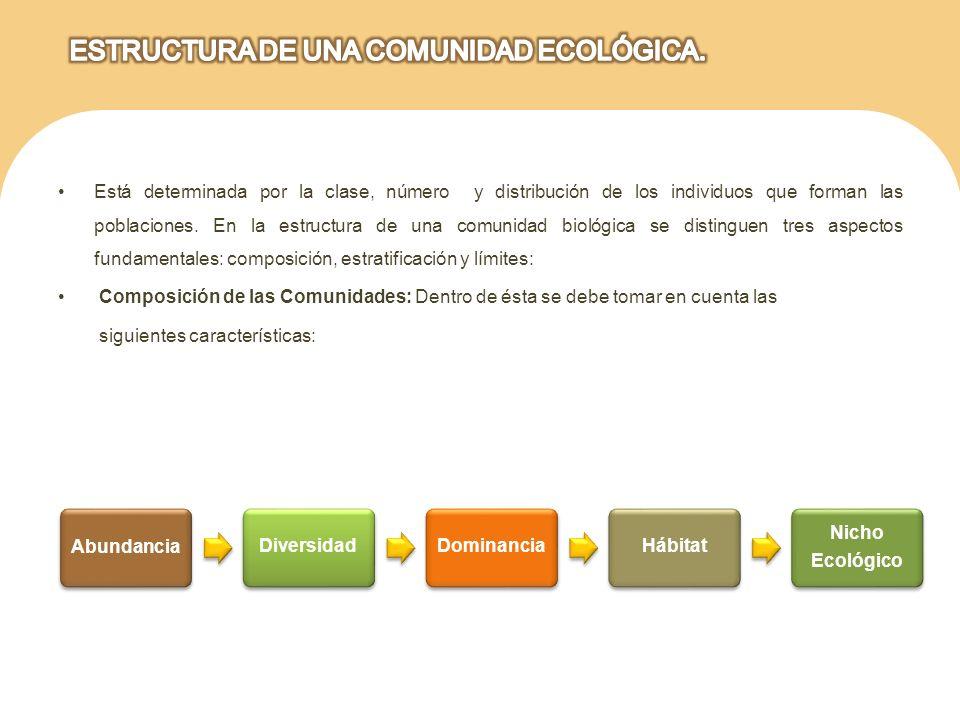 ESTRUCTURA DE UNA COMUNIDAD ECOLÓGICA.