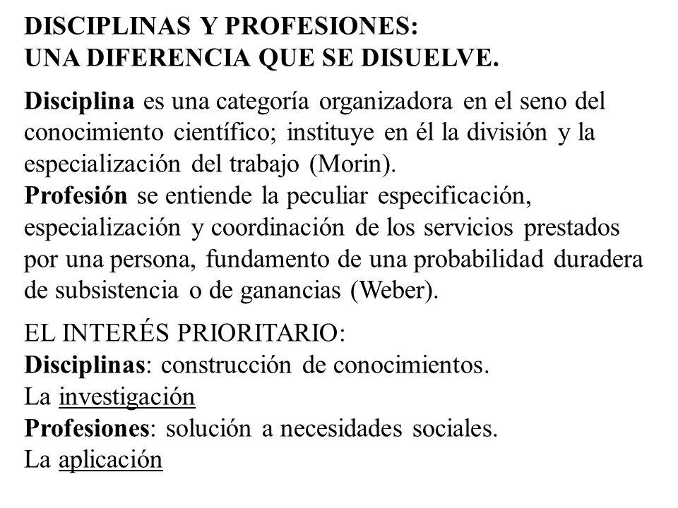 DISCIPLINAS Y PROFESIONES: