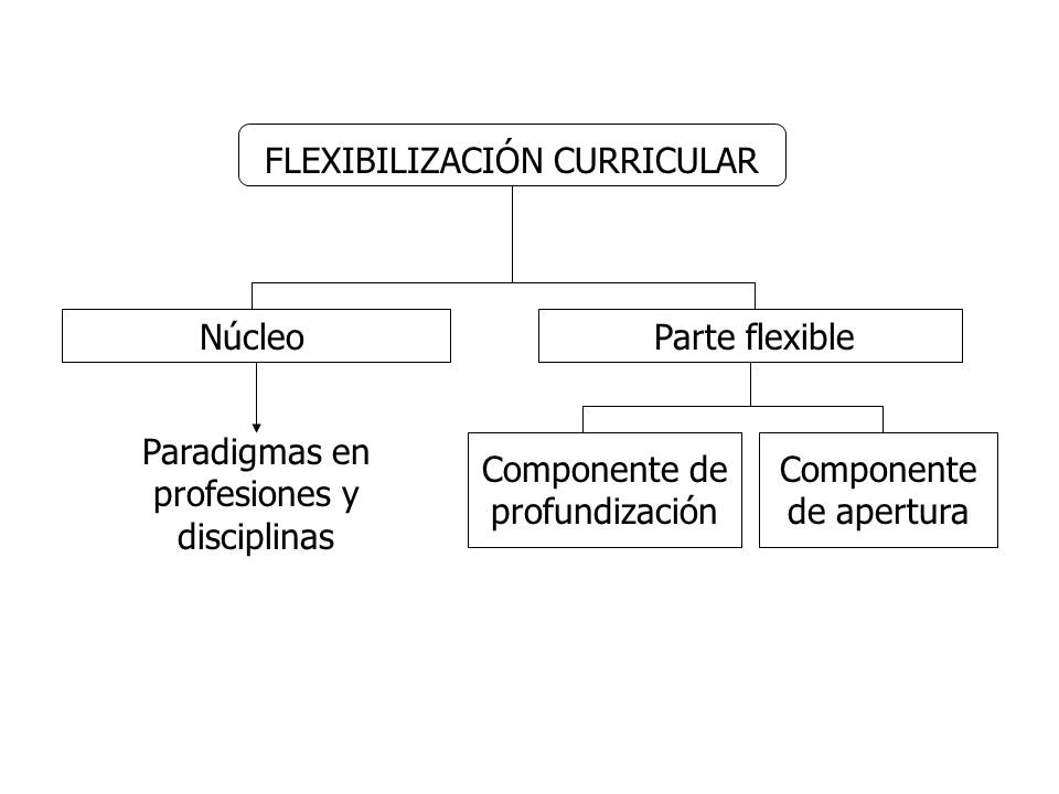 FLEXIBILIZACIÓN CURRICULAR