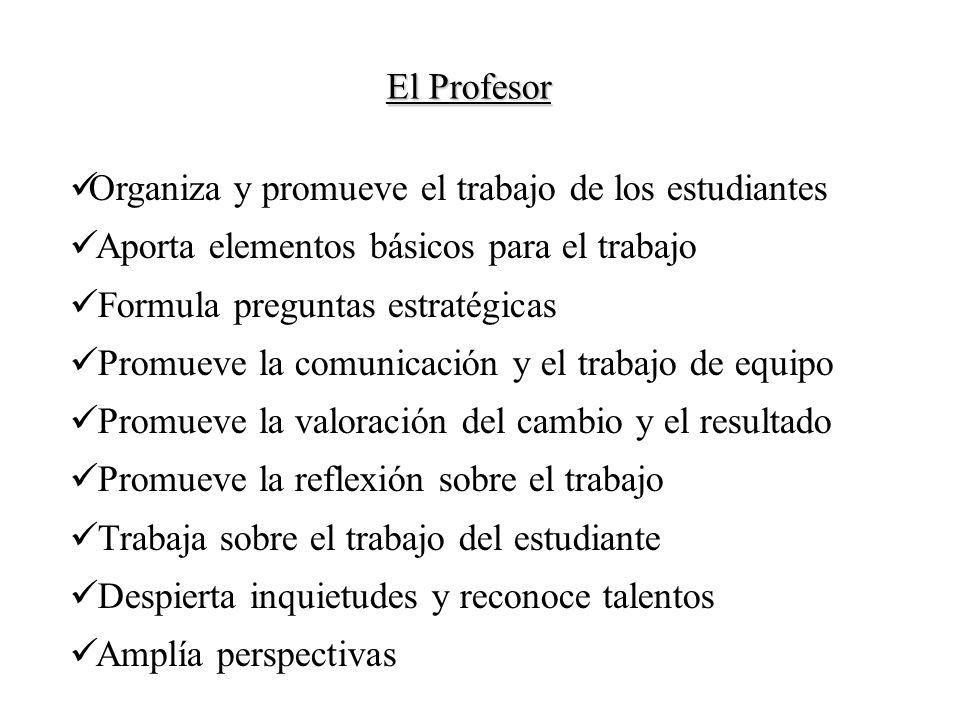 El Profesor Organiza y promueve el trabajo de los estudiantes. Aporta elementos básicos para el trabajo.