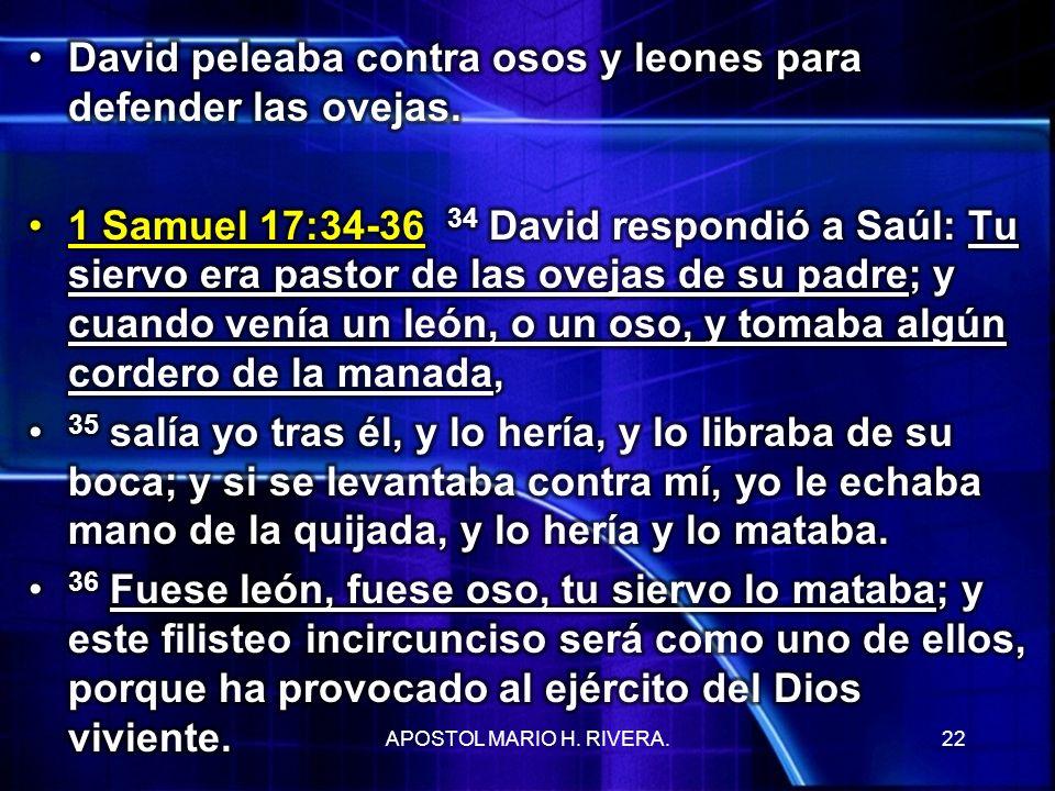 David peleaba contra osos y leones para defender las ovejas.