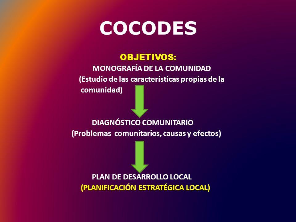 MONOGRAFÍA DE LA COMUNIDAD