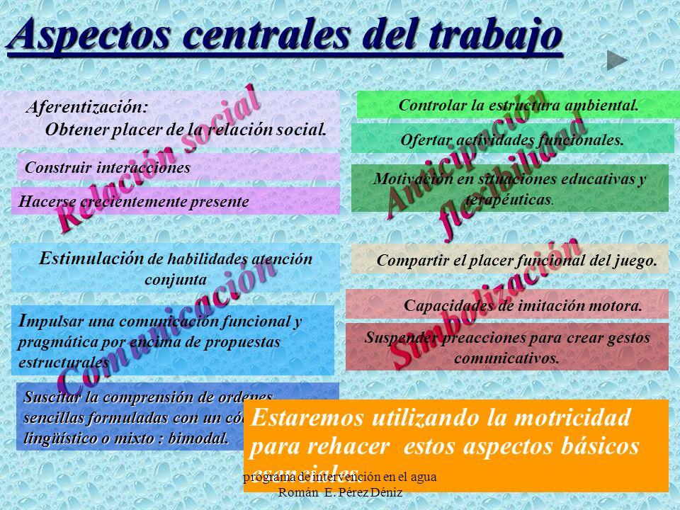 Aspectos centrales del trabajo