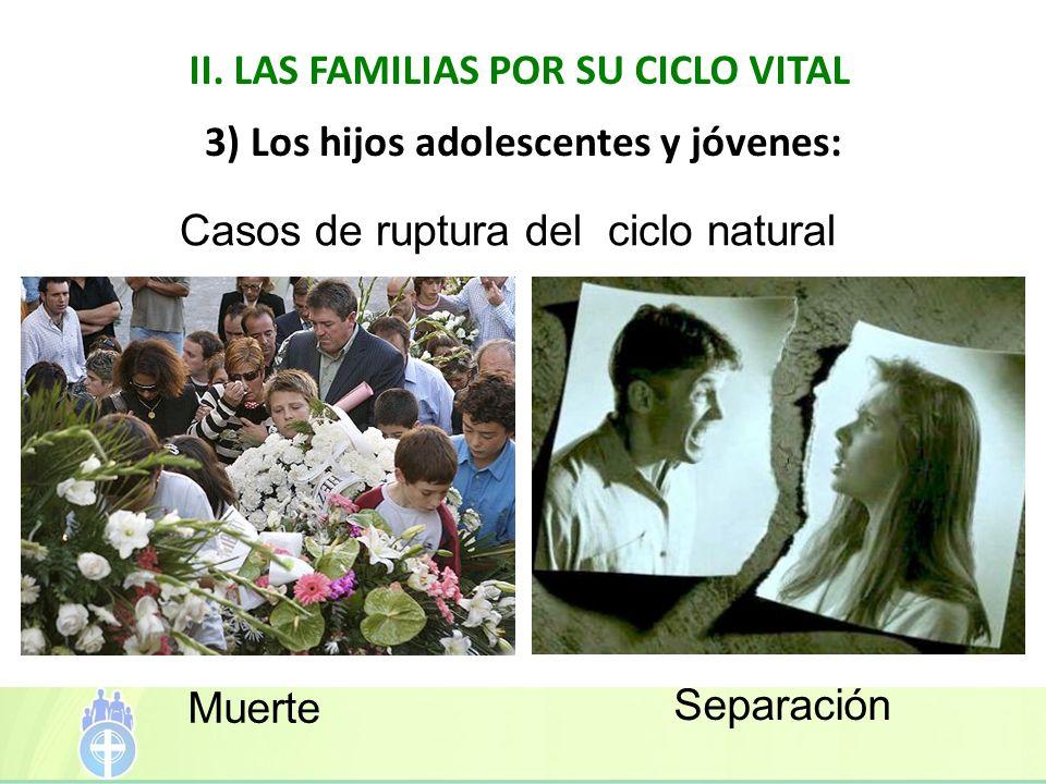II. LAS FAMILIAS POR SU CICLO VITAL