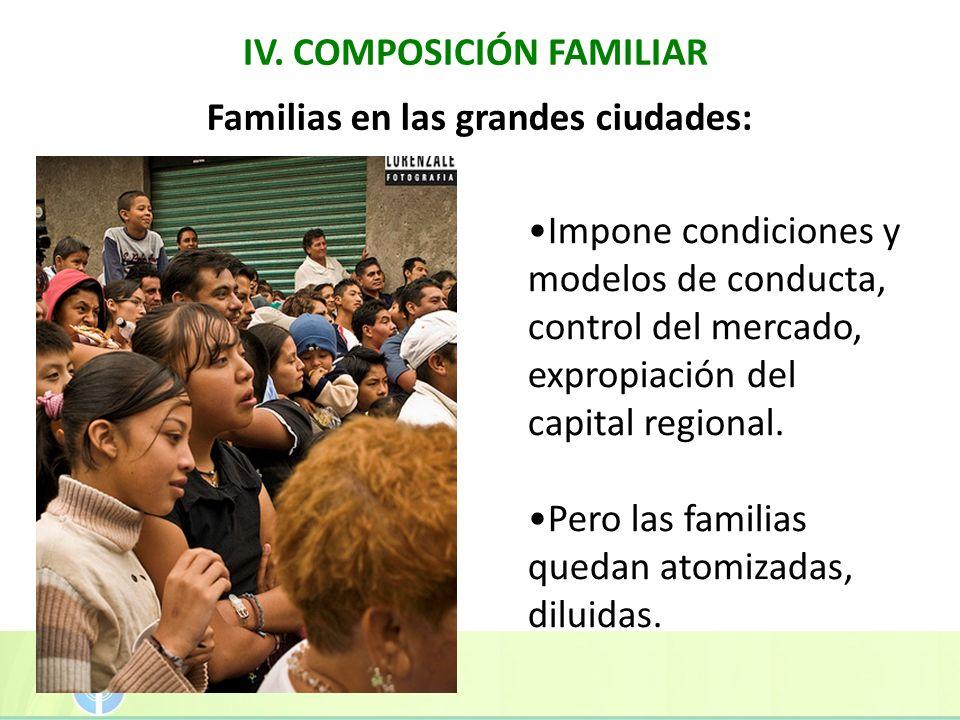IV. COMPOSICIÓN FAMILIAR Familias en las grandes ciudades: