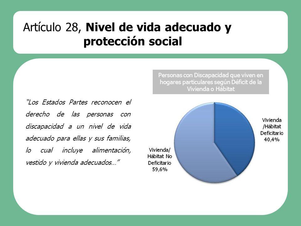 Artículo 28, Nivel de vida adecuado y protección social