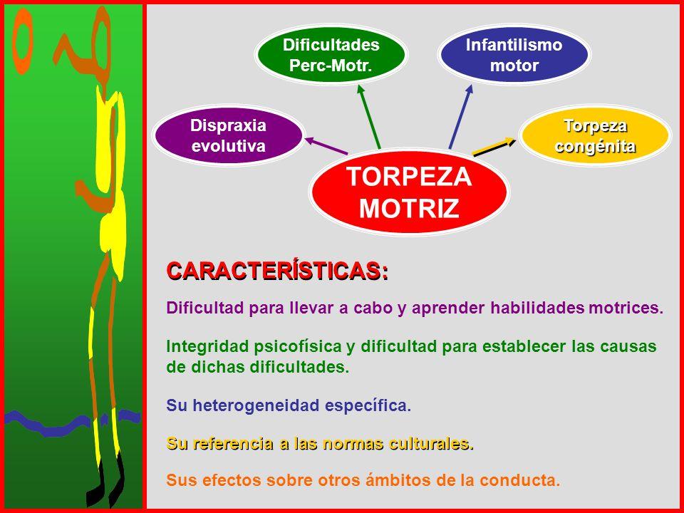 TORPEZA MOTRIZ CARACTERÍSTICAS: Dificultades Perc-Motr. Infantilismo