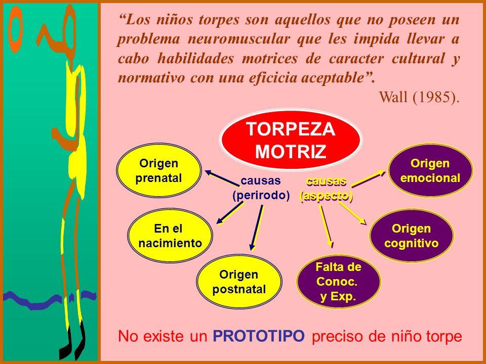Los niños torpes son aquellos que no poseen un problema neuromuscular que les impida llevar a cabo habilidades motrices de caracter cultural y normativo con una eficicia aceptable .