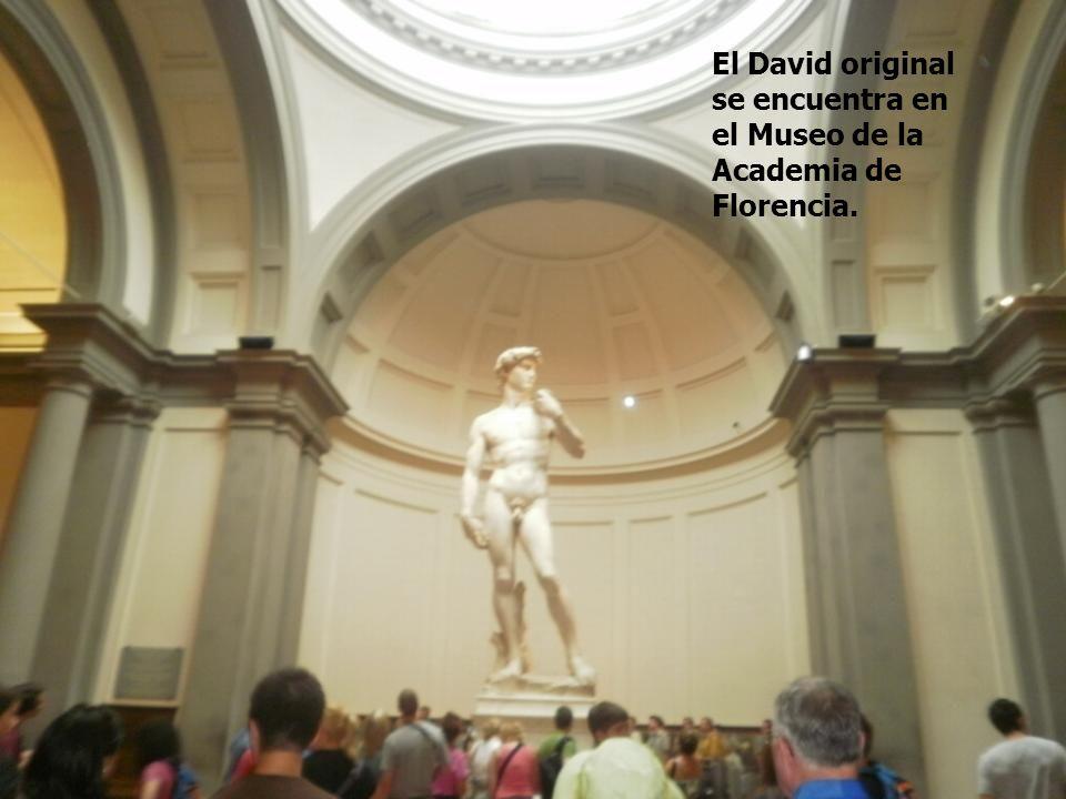 El David original se encuentra en el Museo de la Academia de Florencia.