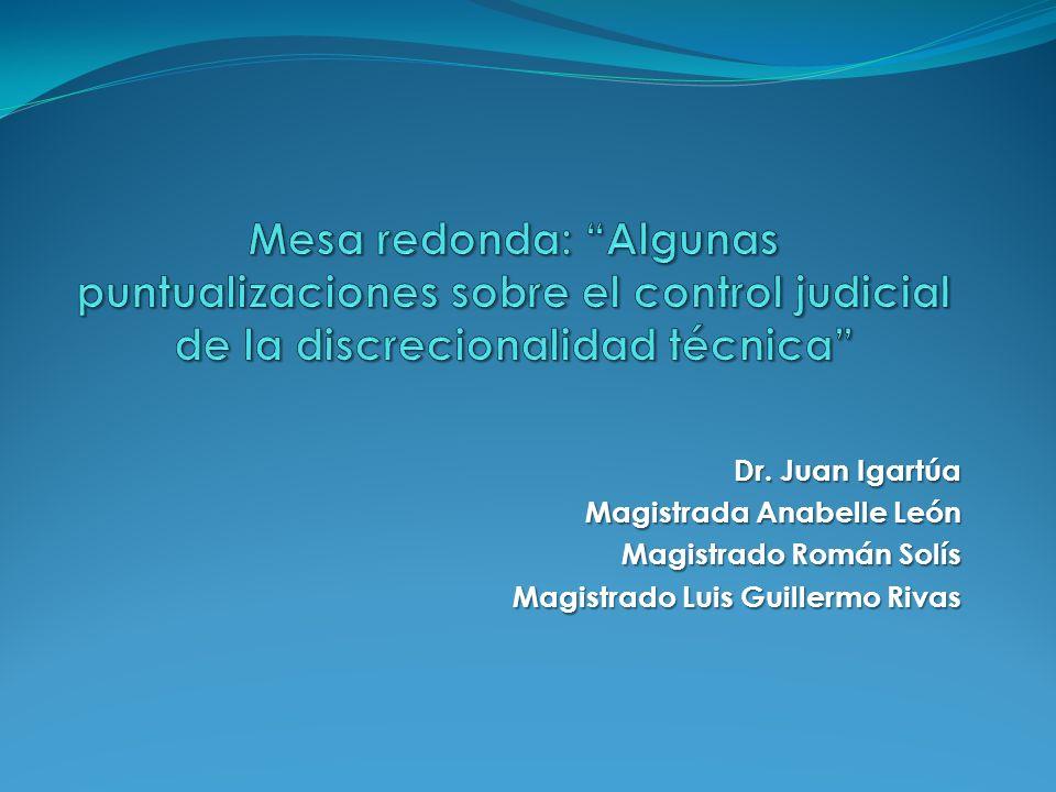 Mesa redonda: Algunas puntualizaciones sobre el control judicial de la discrecionalidad técnica
