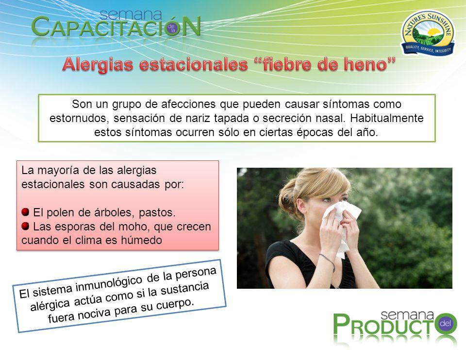 Alergias estacionales fiebre de heno
