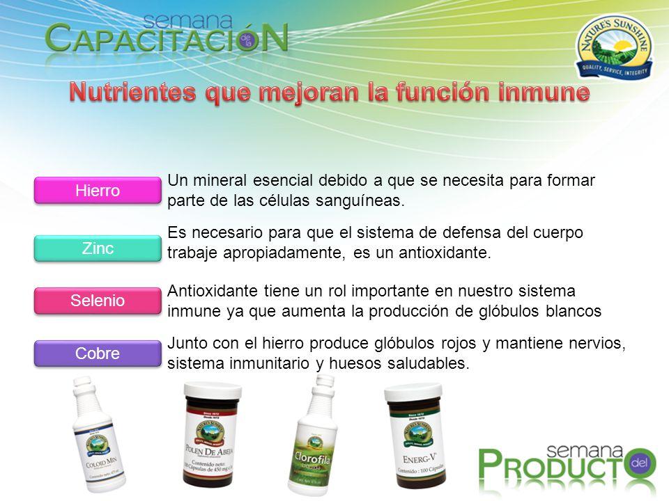 Nutrientes que mejoran la función inmune