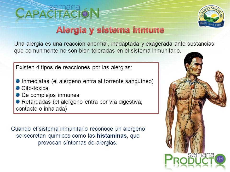 Alergia y sistema inmune