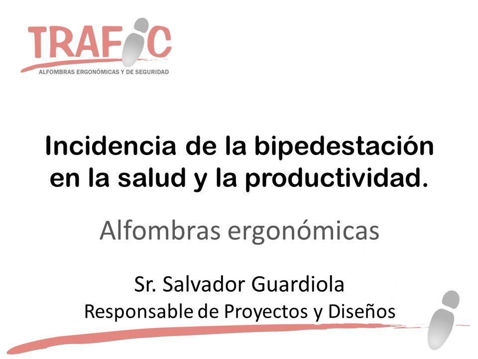 Incidencia de la bipedestación en la salud y la productividad.