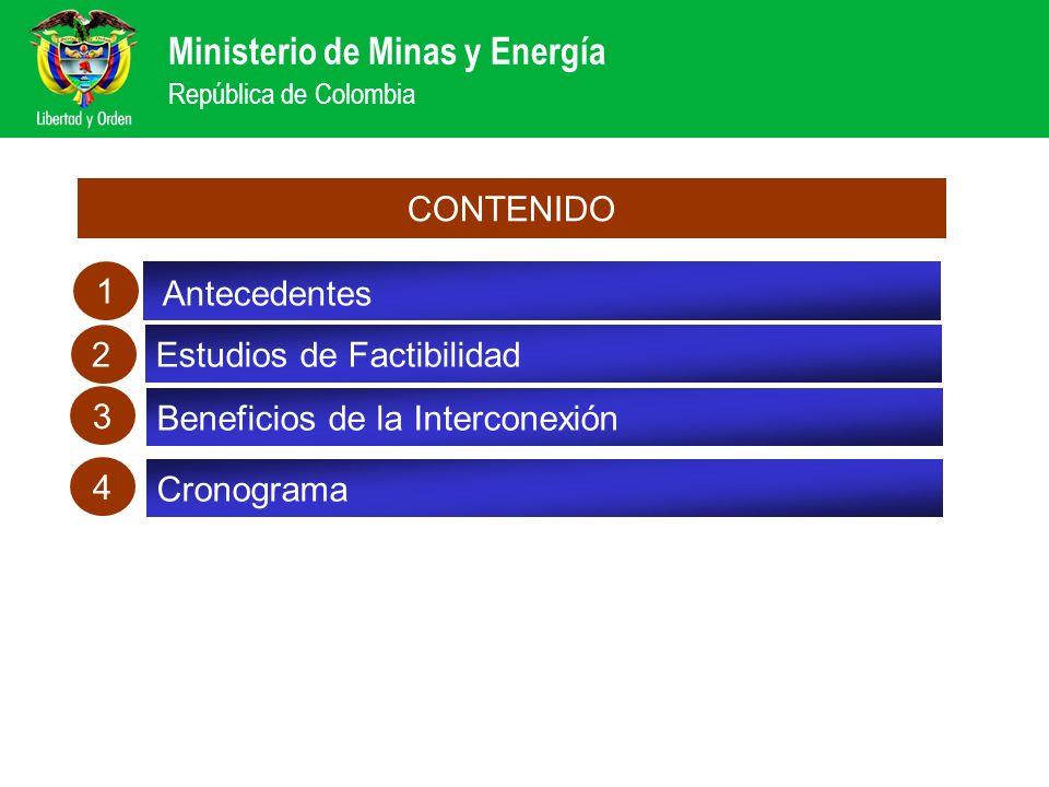 CONTENIDO 1. Antecedentes. Balance de las reformas sector eléctrico. 2. Estudios de Factibilidad.