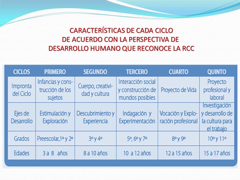 CARACTERÍSTICAS DE CADA CICLO DE ACUERDO CON LA PERSPECTIVA DE