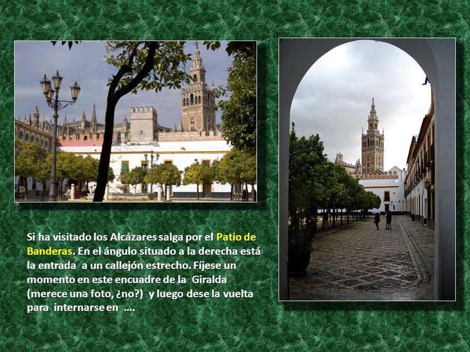 Si ha visitado los Alcázares salga por el Patio de Banderas
